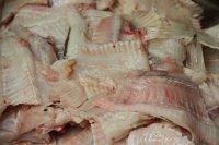 Foto Fischabschnitte