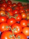 Bild Tomaten. Rispel Tomaten, Bild Roh, Bild Reif,